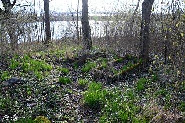 Grajwo - nieczynny cmentarz ewangelicki
