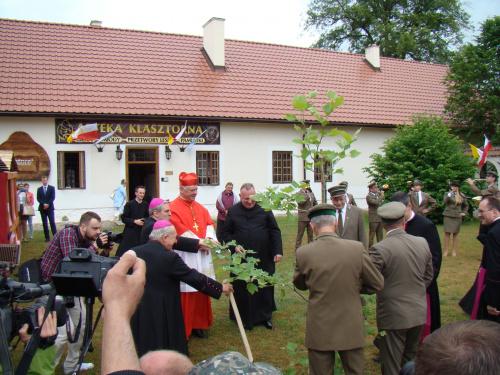 Niech dąb rośnie i upamiętnia pobyt Kardynała w Pustelni