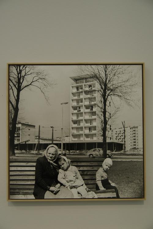jedno z wystawionych zdjęć Wojciecha Plewińskiego...