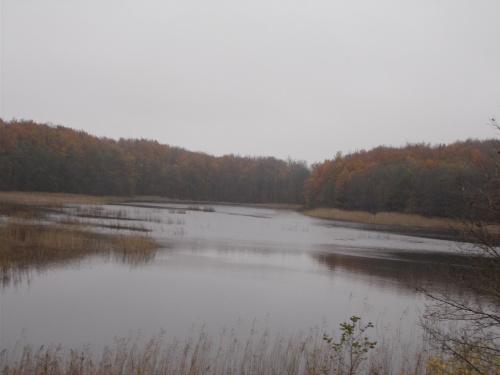 Jezioro Stare