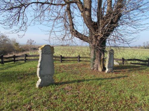 Dwustelowy cmentarz mennonicki w Marezie