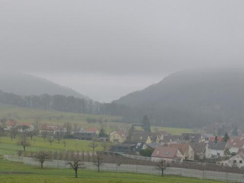 dzisiaj mgły
