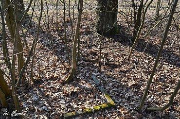Kózki - Nieczynny cmentarz Ewangelicki nr1