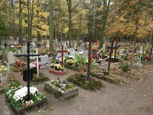 Kwatera dziecięca na Cmentarzu Centralnym. Wszystkie gróbki są z lat 50-tych ubiegłego wieku [*]