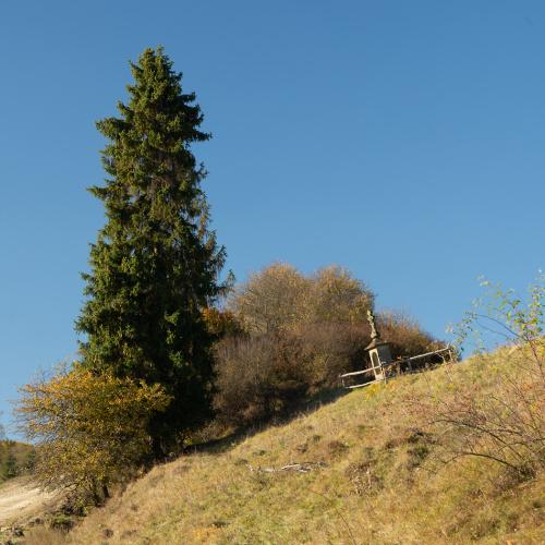 W nieistniejącej wsi Czarne, Beskid Niski