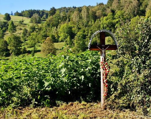 Przydrożny krzyż - Wierchomla Mała - wieś w pow. nowosądeckim ... (27.08)