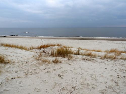 Wydawać by się mogło, że plaża to tylko piach i jednostajna monotonia, ale wcale tak nie jest...
