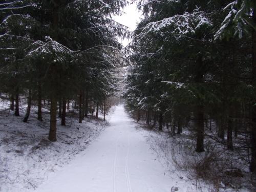 500 metrów do grodziska Cholin już bez lodu