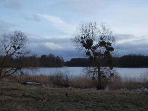 Szymbark i Jezioro Szymbarskie.