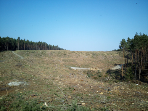 A z tej wydmy widać Bałtyk.