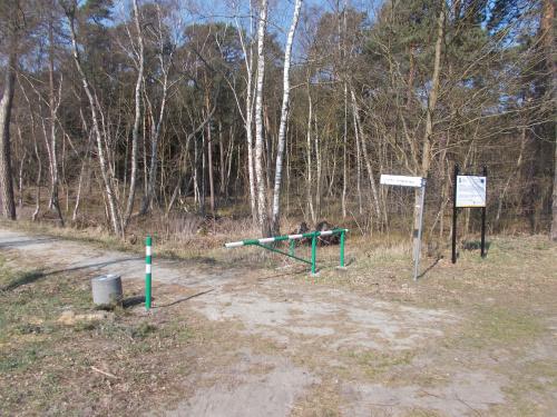 Kąty Rybackie - wjazd na ścieżkę rowerową w kierunku Sztutowa. Wjazd z asfaltu DW 501.