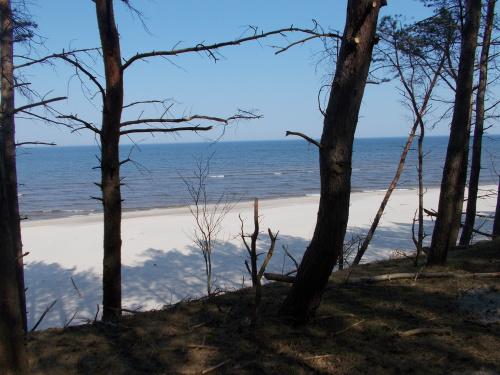 Kilometr za Przebrnem zaczyna się najpiękniejszy odcinek ścieżki. Promenada nad plażą. Cudo!