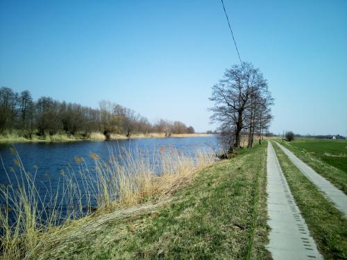 Z Rybiny do Tujska wzdłuż Szkarpawy z pominięciem DW 502.