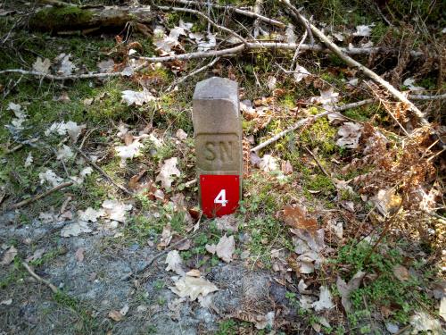 Czerwona tabliczka kilometrażu na ścieżce rowerowej wzdłuż Mierzei Wiślanej. To chyba nie jest ostateczne oznakowanie ;-)