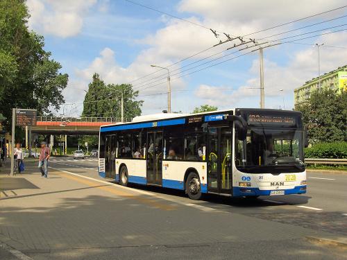 MAN NL313 Lion`s City, #2026, PKM Gdynia
