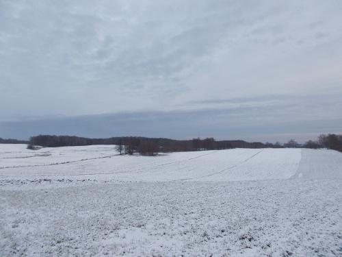 Zima w okolicach Majewa - tryb krajobraz
