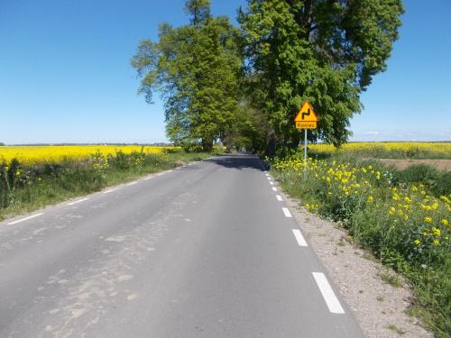 Nowy asfalt w kierunku Kamieńca Suskiego