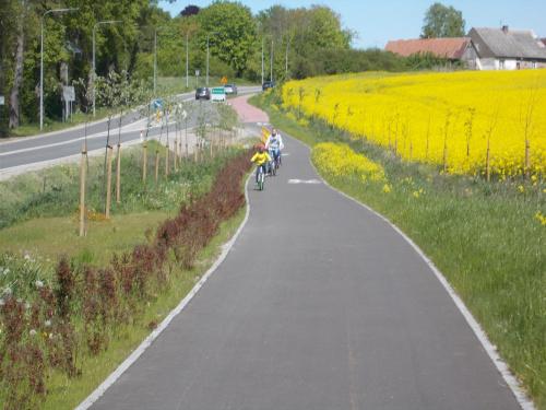 Im bliżej Prabut, tym ruch rowerowy gęstnieje