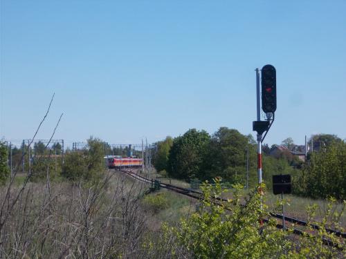 Wjazd na stację z perspektywy linii do Kwidzyna