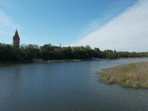 Nogat w Malborku