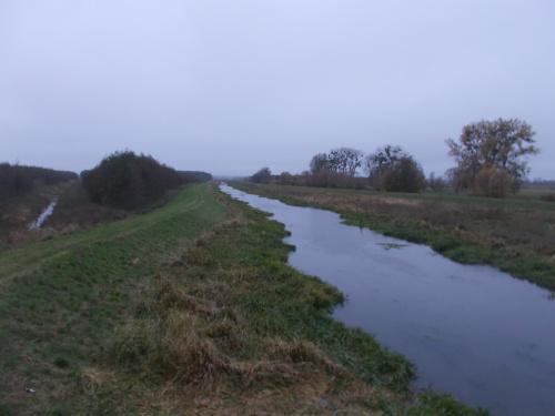 Świt nad rzeką Dzierzgoń