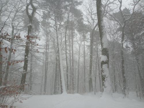 W minioną sobotę-podczas burzy śnieżnej. Nawet dwa grzmoty usłyszeliśmy.