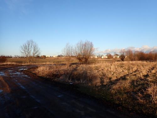Panorama Nowego Dworu Elbląskiego