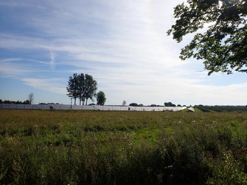 Duża farma słoneczna przed Braniewem