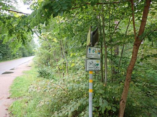 Kierunek Leśniewo