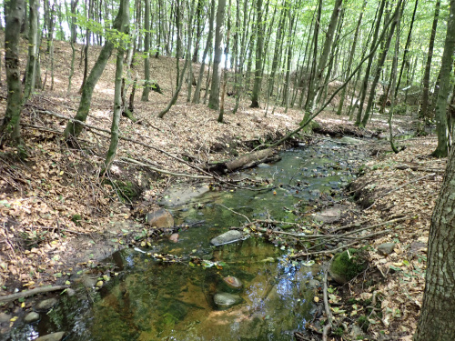 Nienazwany potok, łatwy do pokonania
