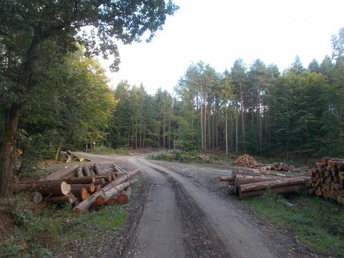 Remont obejmuje około 3 km drogi do krzyżówki na Przybyłowo