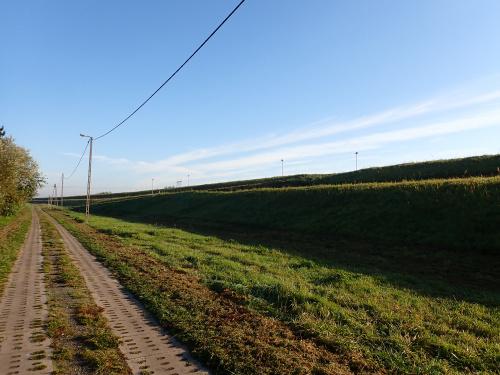 Wiślana Trasa Rowerowa-wjazd na wał w Kiezmarku