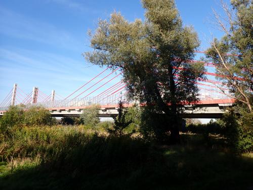 Most południowej obwodnicy Gdańska w ciągu S7