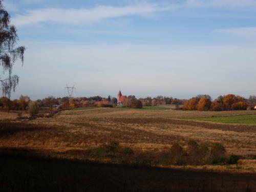 Na horyzoncie gotycki kościół w Przezmarku